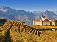 Alla scoperta dei vini della Regione del Lago di Ginevra