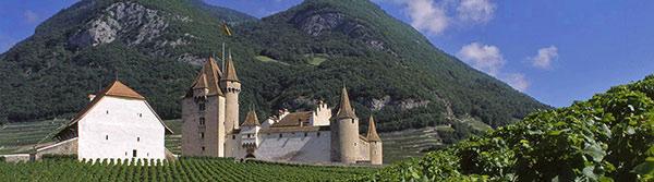 Aigle_Chateau