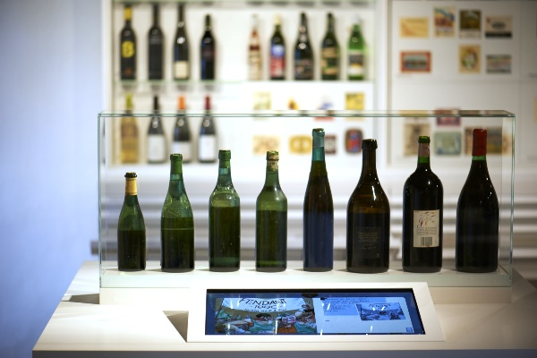 Museo della Vigna