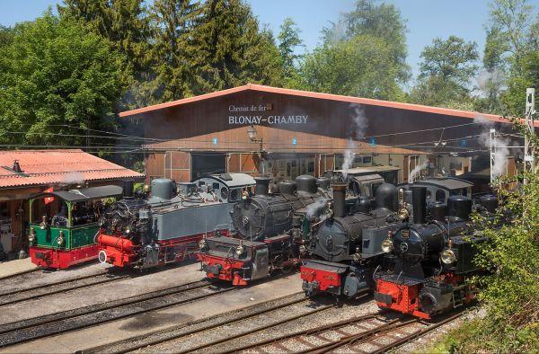 Museo ferroviario Blonay-Chamby Vaud Svizzera
