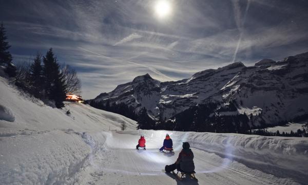 Slittino notturno Vaud