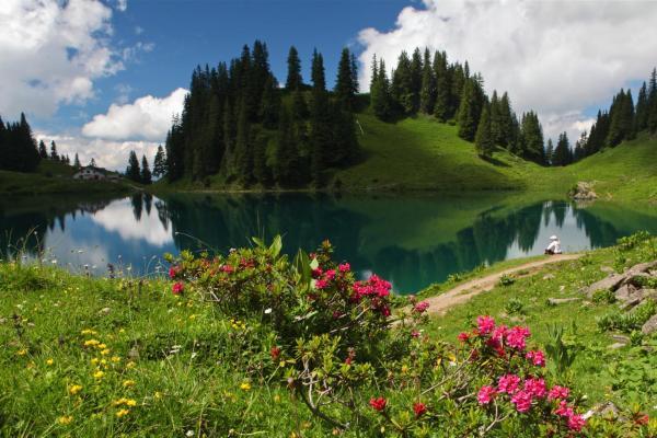Lac Lioson Les Mosses