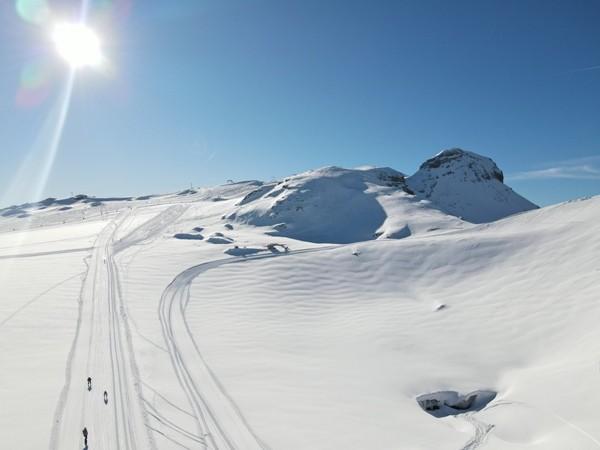 Svizzera Alpi