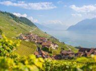 Lavaux: Patrimonio mondiale dell'UNESCO